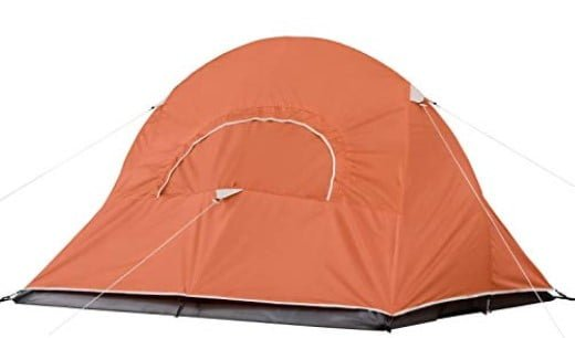 Coleman Ho0ligan Backpacking Tent