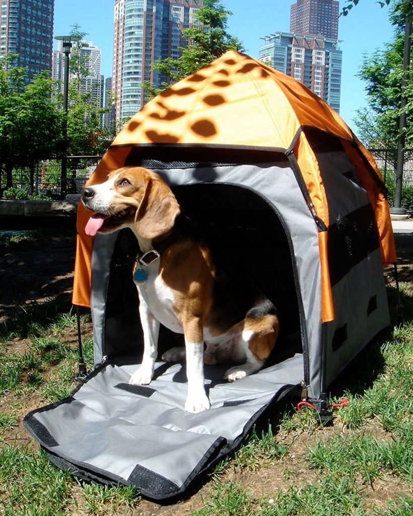 Best Backpacking Tents for dog
