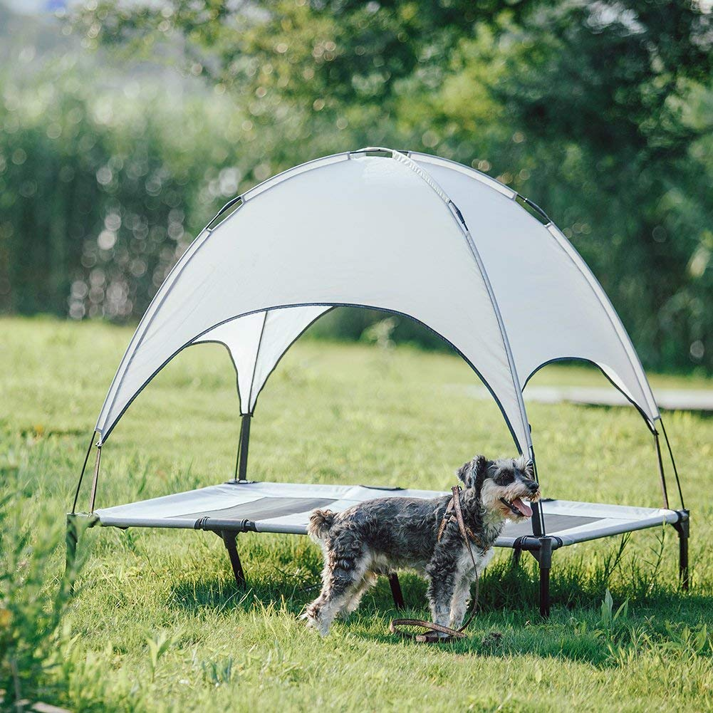 Camping tents for dog