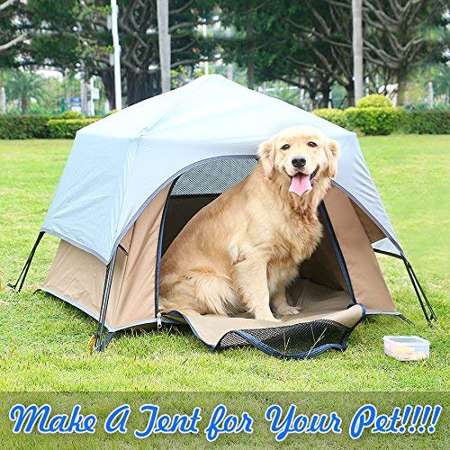 tents for dog